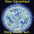Cover New Gänsehaut